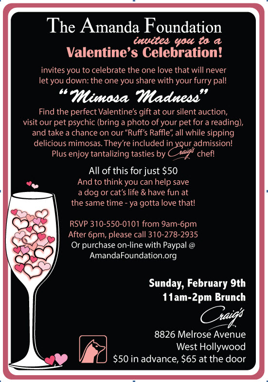 Venice real esate agency promoting animal rescue benefit for Amanda Foundation in venice beach ca
