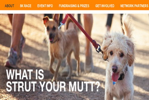 Barker Event | Strut Your Mutt animal rescue fundraiser